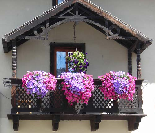 balcony-decorating-ideas-plants-flowers-1